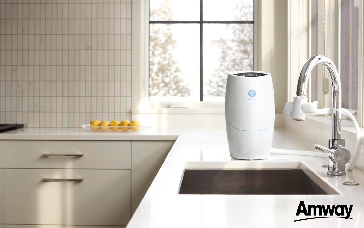Espring Water Purifiers Amp Treatment Seagull My Aircon